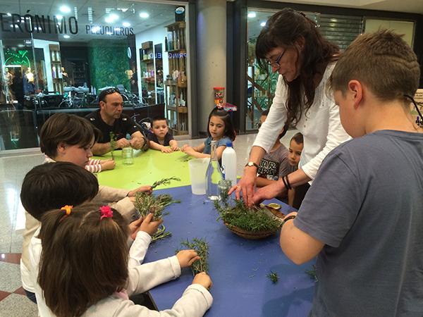 Para ir conociendo nuestras plantas - Julia Martínez - Alhsur 04