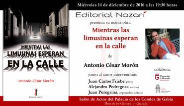 'Mientras las limusinas esperan en la calle' en Granada